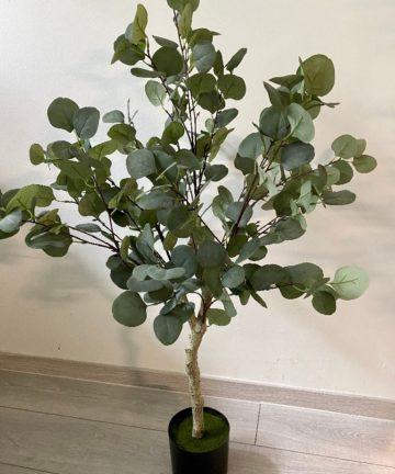 umjetno stablo eukaliptusa