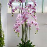 umjetna orhideja