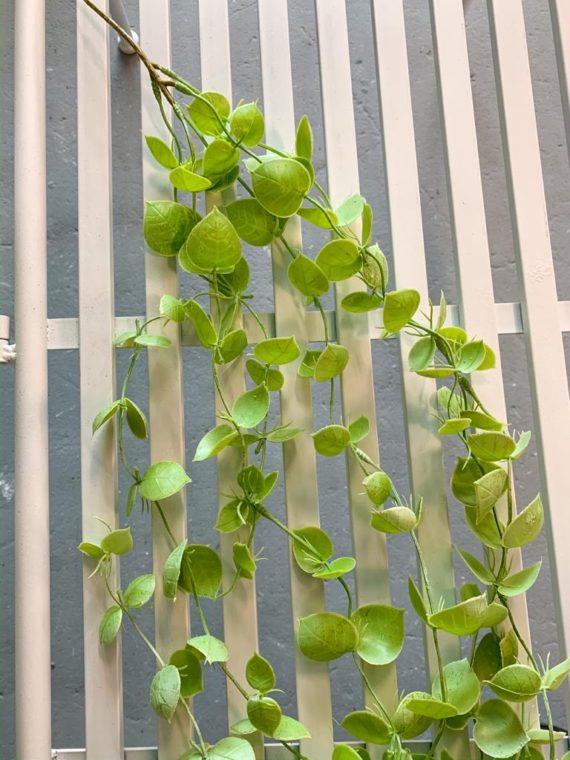 viseće-zelenilo