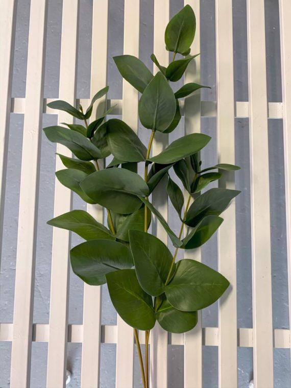 zelenilo (5)