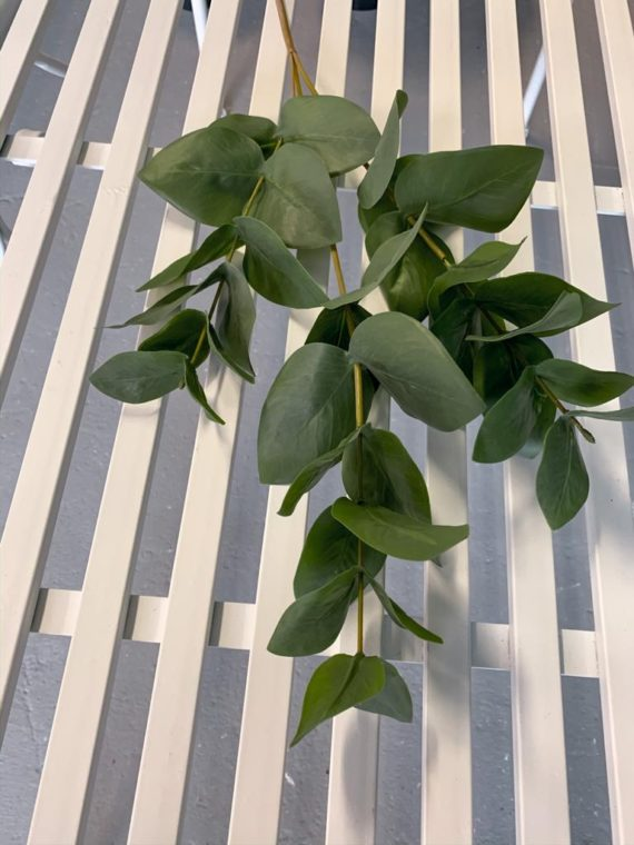 zelenilo (7)
