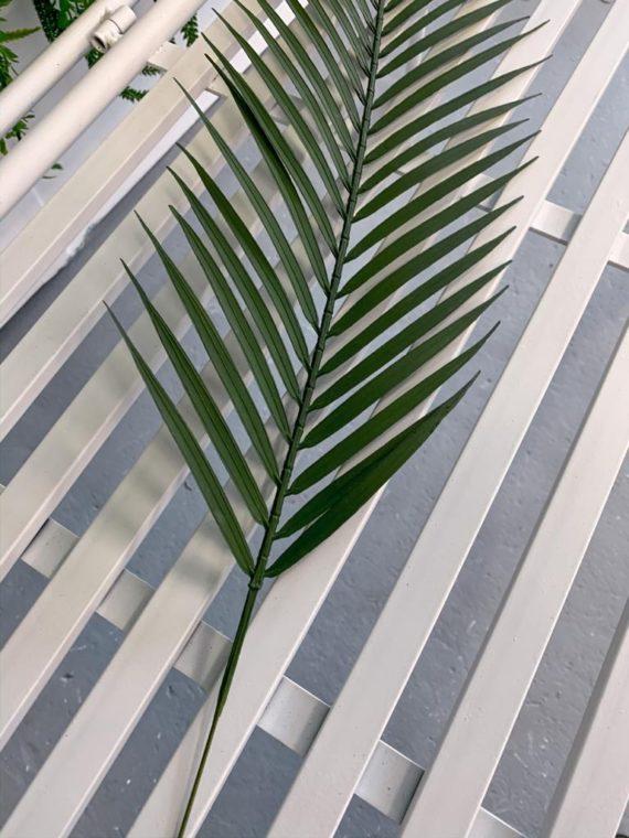 list-palme (5)