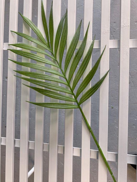list-palme