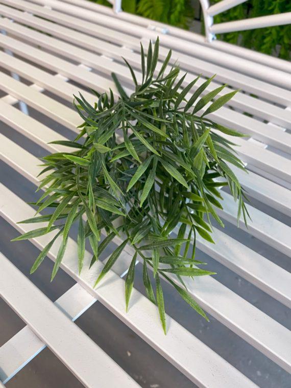 palmica (6)