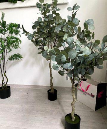 Umjetni Eukaliptus