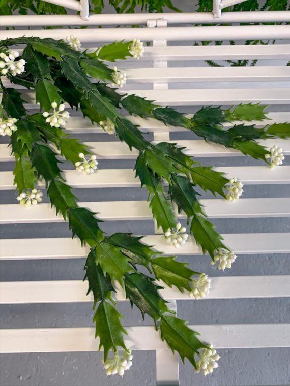 viseće-zelenilo (10)