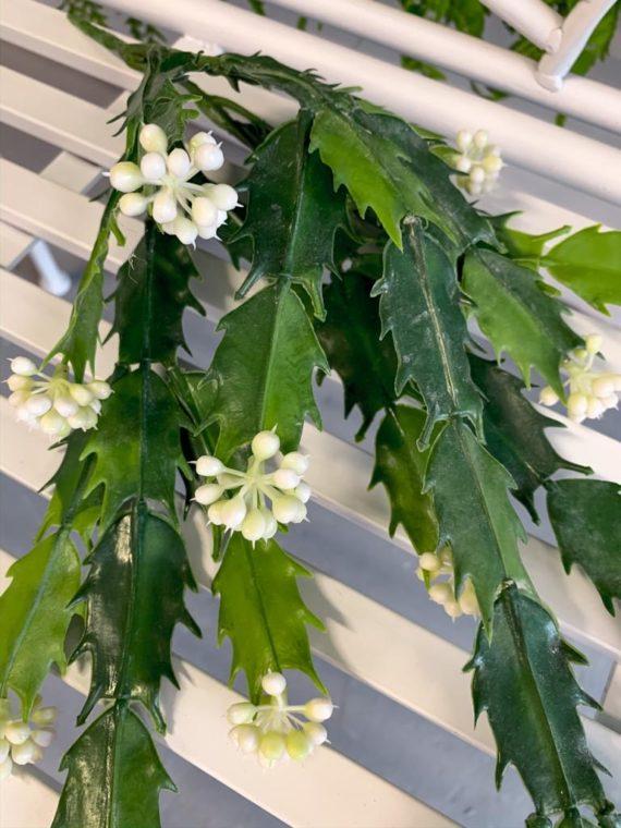 viseće-zelenilo (12)