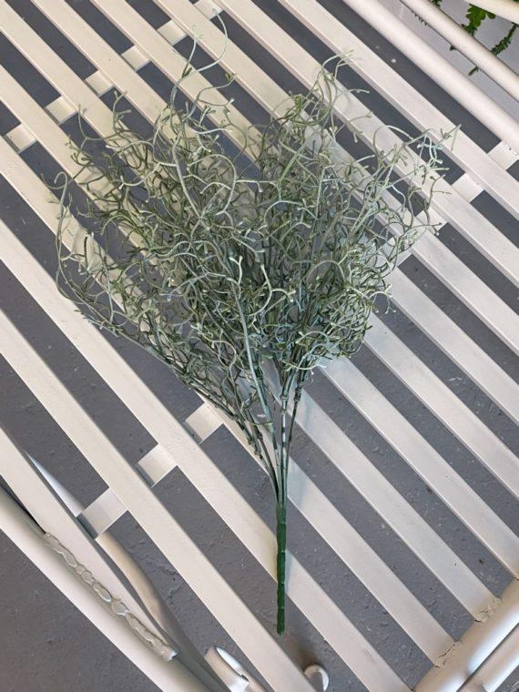 zelenilo (1)