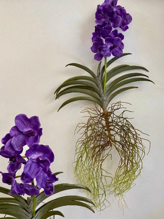 orhideja_10