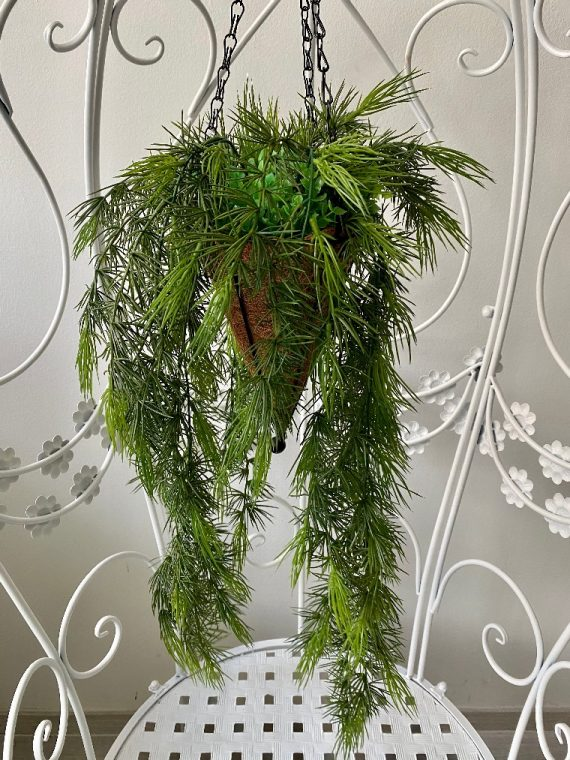 visece zelenilo_17