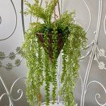 visece zelenilo_4